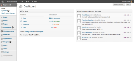 WordPress 3.7 Dashboard