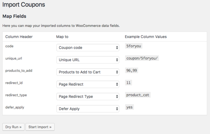 WooCommerce URL Coupons import field mapping